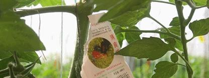 吉林省新天地生物防治技术有限公司